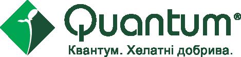 квантум.png