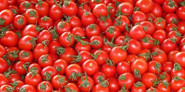 томати для різних замовників