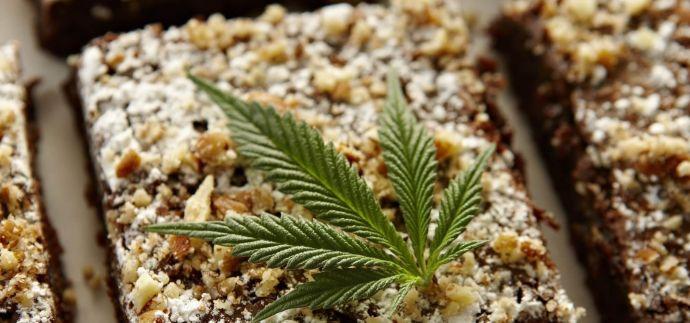 Проростки конопли шишки марихуаны