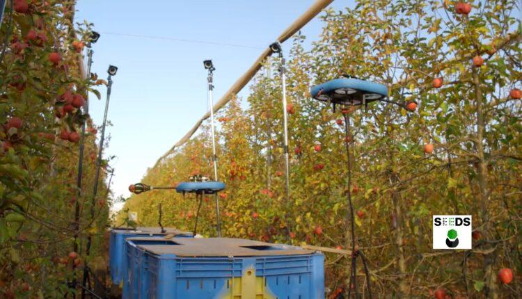 робот для збору яблук