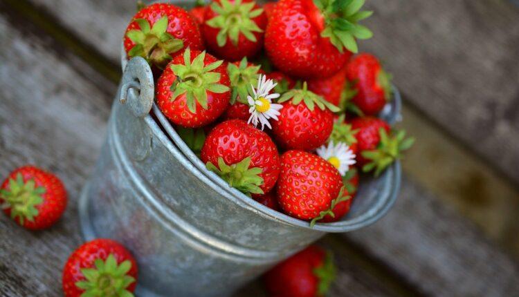 ягоди фото
