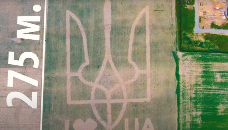 герб України на полі