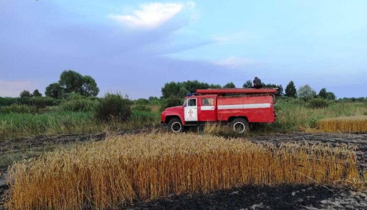 пожежна машина у полі