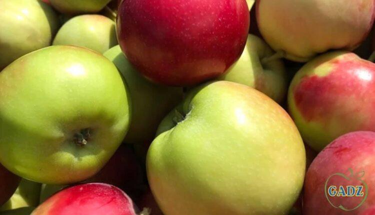 зелені та червоні яблука