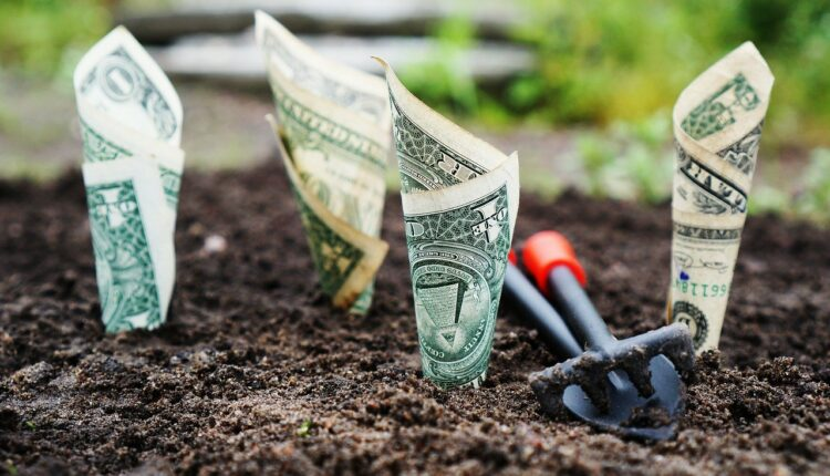 гроші в землі
