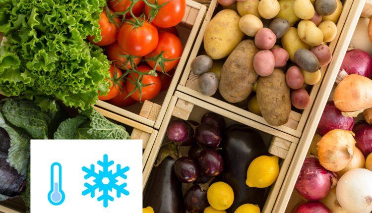 зберігання овочів та фруктів